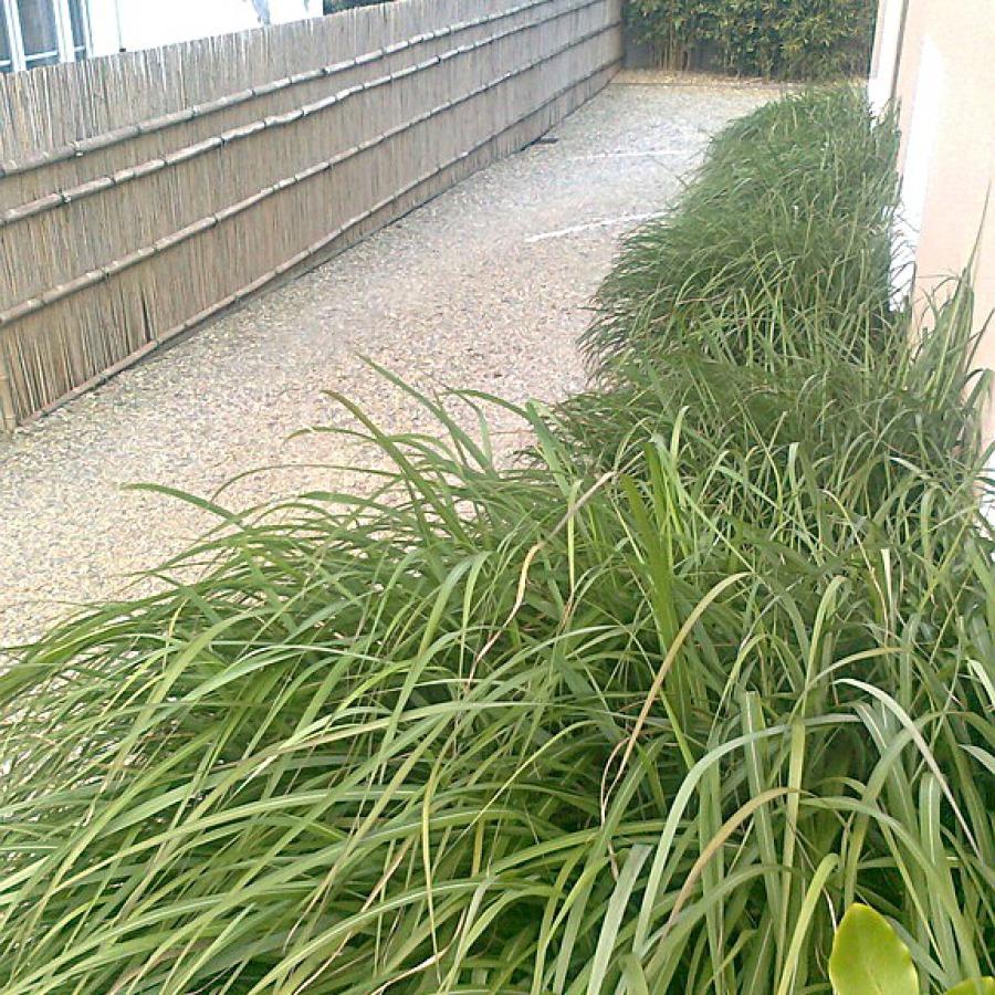 Shimizu gaki, barrière traditionnelle bambou jardin japonais, zen, clôture, palissade, séparation